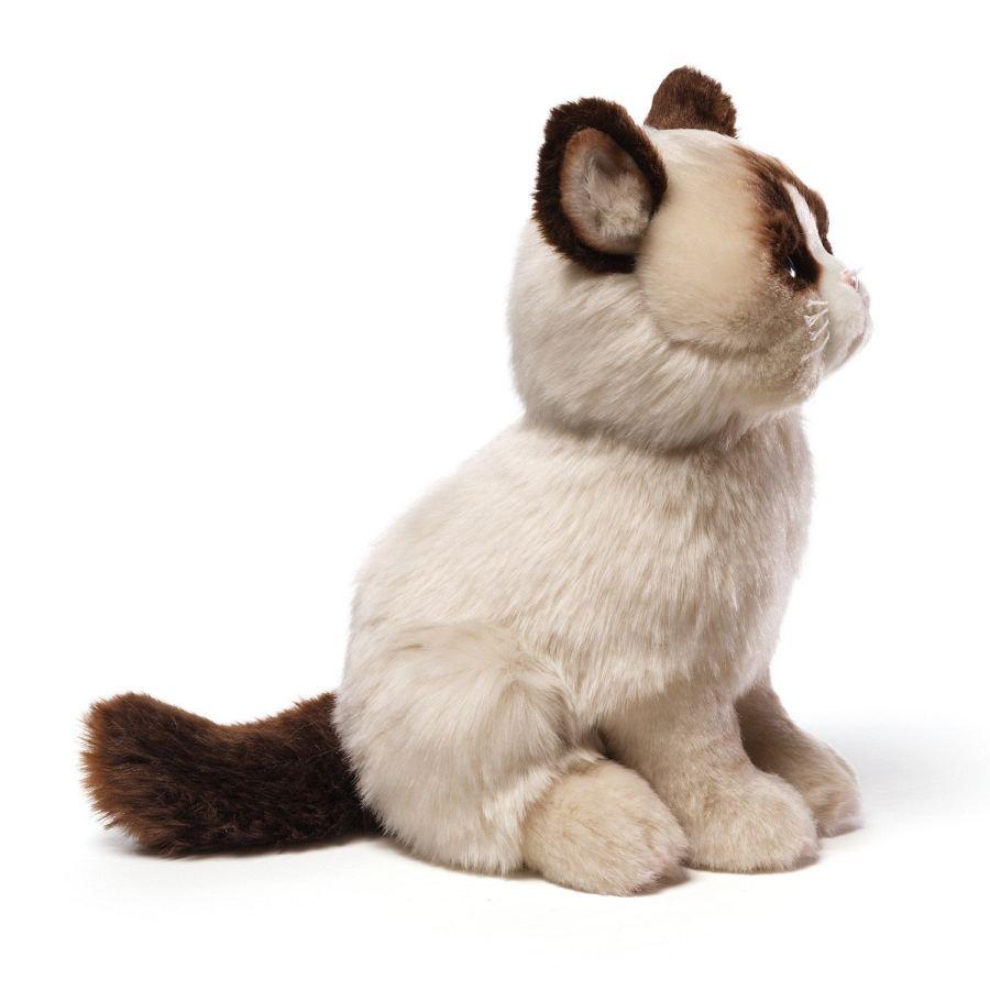 Grumpy Cat Peluche